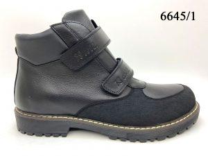 М 6645/1